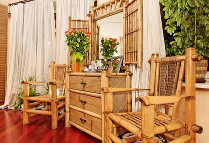 Bambus w domu