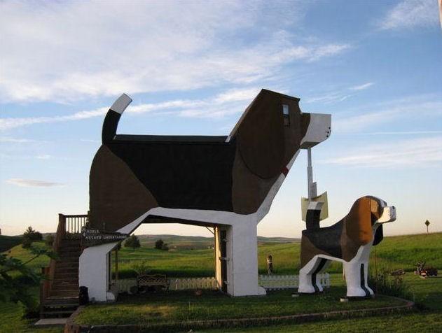 Największy Beagle na świecie