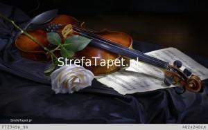 skrzypce z różą fototapeta
