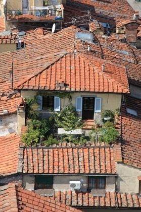 Taras na dachu