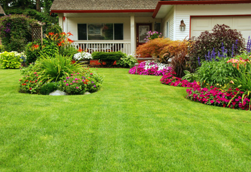 Ciekawy ogród