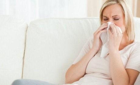 Podłogi dla alergików